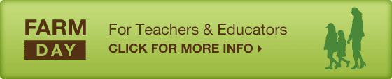 For Teachers and Educators - Click for more info